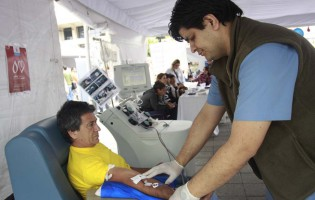 Cientos de tucumanos se sumaron a la campaña Efecto Mariposa