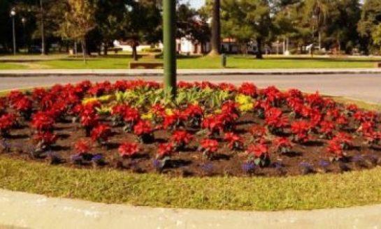 Un plan para embellecer el Parque 9 de Julio