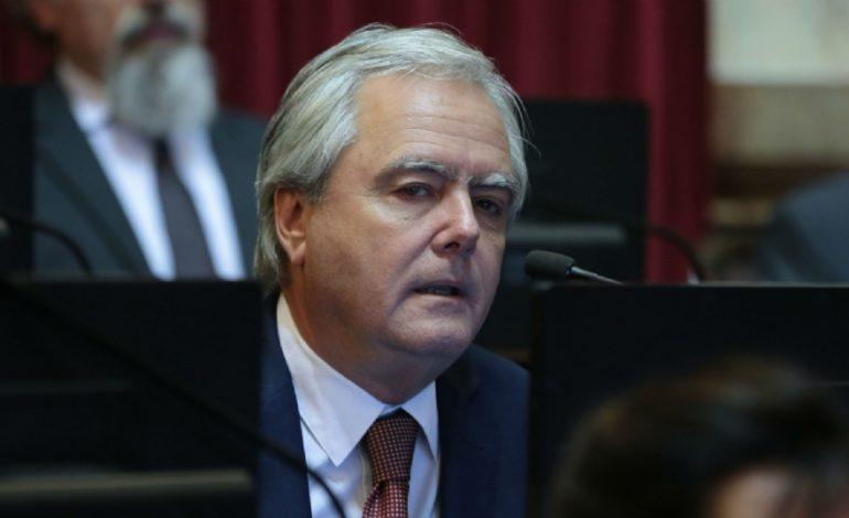 Presupuesto 2019: para Pinedo habrá 'una mayoría de políticos responsables'