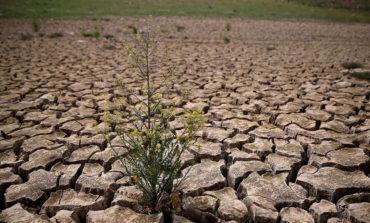 Según la ONU, quedan sólo 12 años para evitar una catástrofe climática