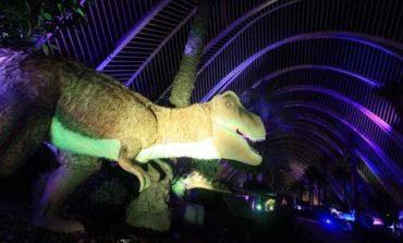 Viví una experiencia increíble con los Dinosaurios Robotizados