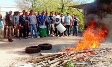 Crisis: Cerró la procesadora de harinas de carne Manfico y despidió sus últimos empleados