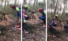 Ciclistas héroes salvaron a perrito de una muerte horrenda