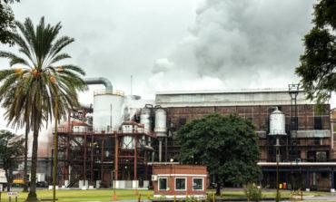 El mejor ingenio azucarero del año es tucumano y se prepara para entrar en era de la Planta 4.0