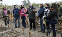 Conocé el proyecto de huerta comunitaria en Banda del Río Salí