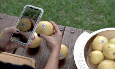 Un novedoso emprendimiento tucumano revoluciona el campo a nivel internacional