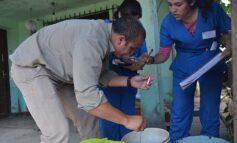 Dos casos importados de dengue fueron confirmados en Tucumán