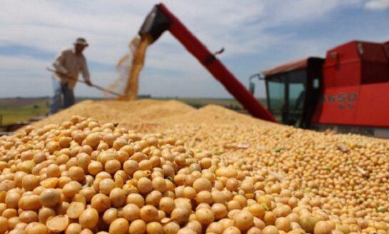 La soja alcanzó su valor más alto en nueve años